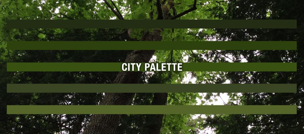 Portfolio_Header_CityPalette.png