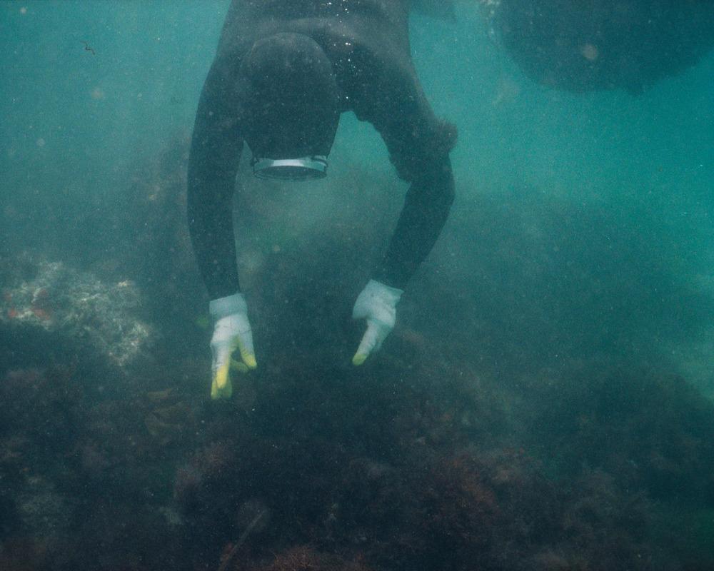 20_underwater 7-.jpg