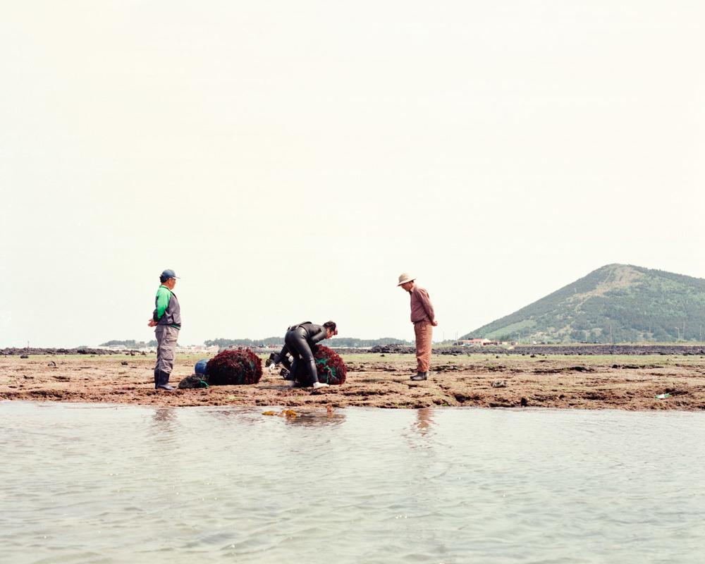 Jeju-Haenyo Catch 76.jpg