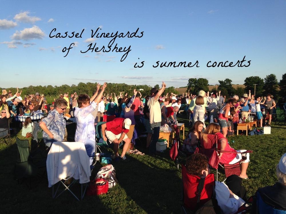 Summer Concert Series 3.JPG