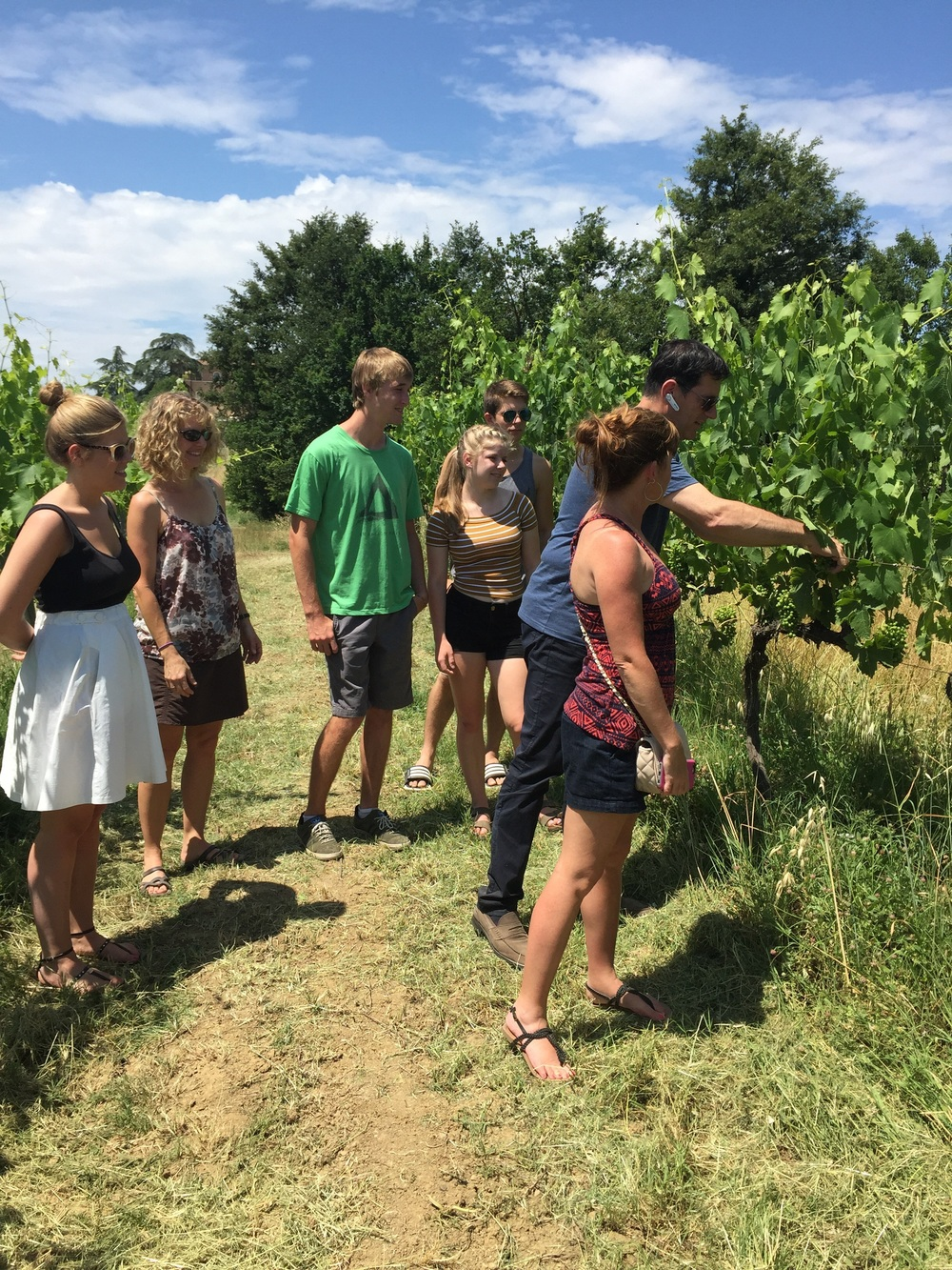 Luca explains how to thin vines to achieve propper crop load