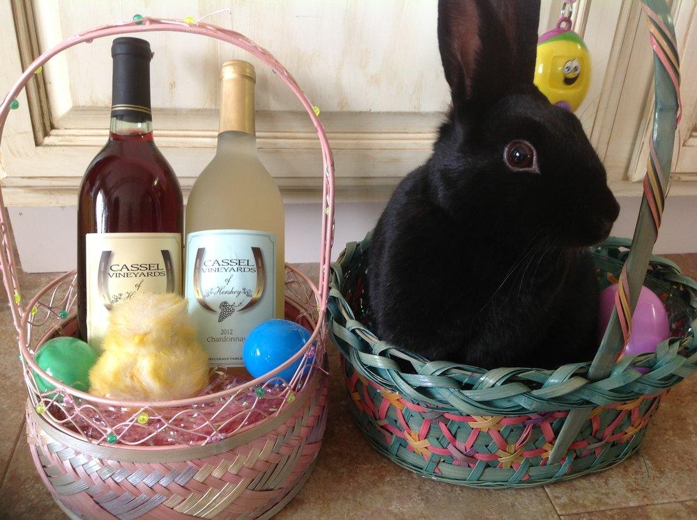 Bunny pic in basket.JPG