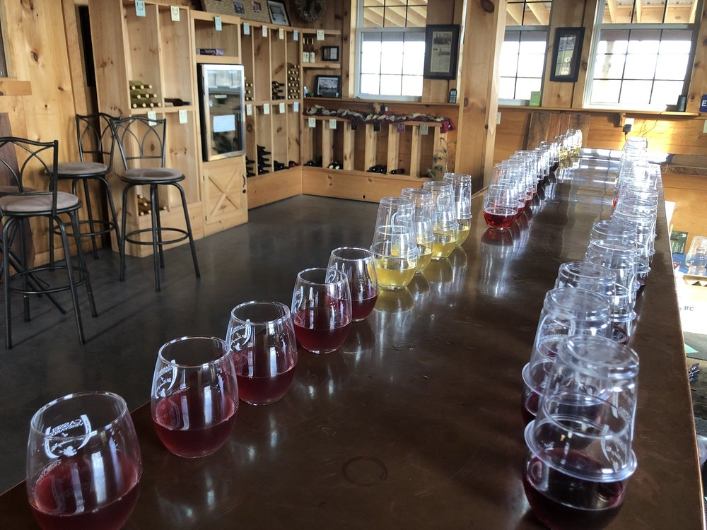 Wines lined up for sensory evaluations