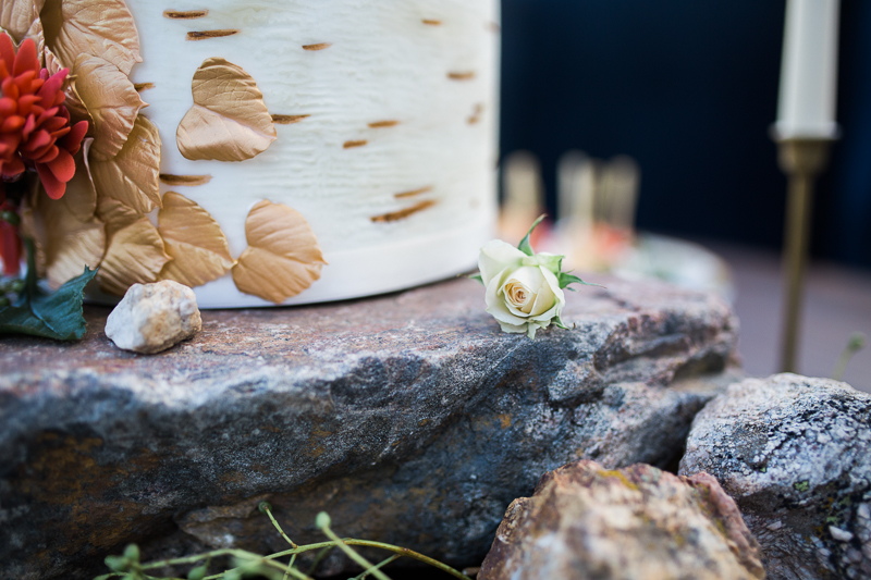 colorado cake table with rocks