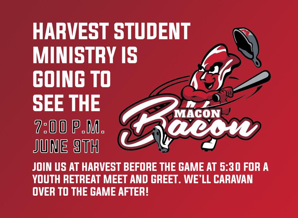 Macon Bacon Game.jpg