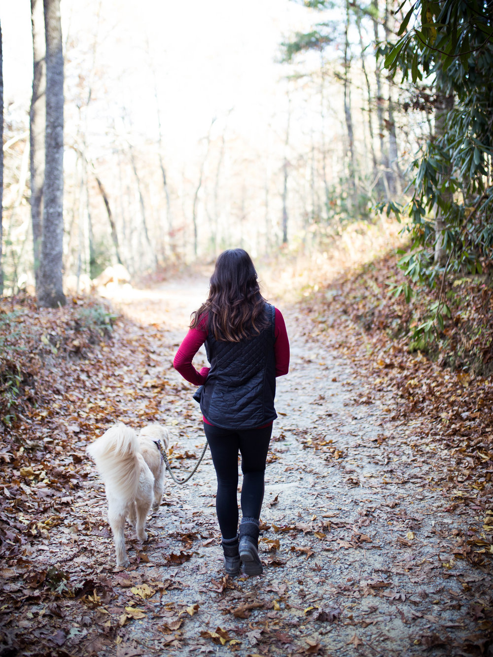 Wander Well: A Weekend in Asheville, NC | Jennifer Diaz | Travel Tips | Healthy Travel | Weekend Getaway | Explore Asheville | What to do in Asheville | Athleta | Winter Workout Clothes | Hiking Trails
