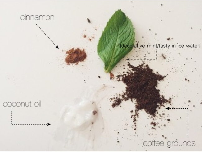 Homemade Coconut + Coffee Scrub // Oil & Grain