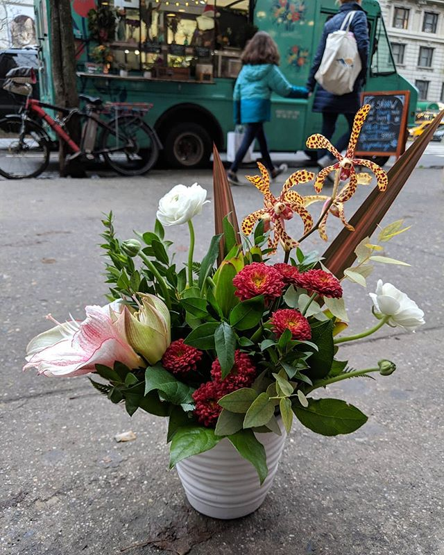 Make the Yuletide gay 🌼 ⛄ 😜 Find us at 92nd & Broadway today until 7pm!  #nycflowerdelivery #orchid #amaryllis #🌈👭 #uprootednyc #uprootedflowertruck #flowertruck #nycflowers #nycfloraldelivery #nycwinter #nycgifts