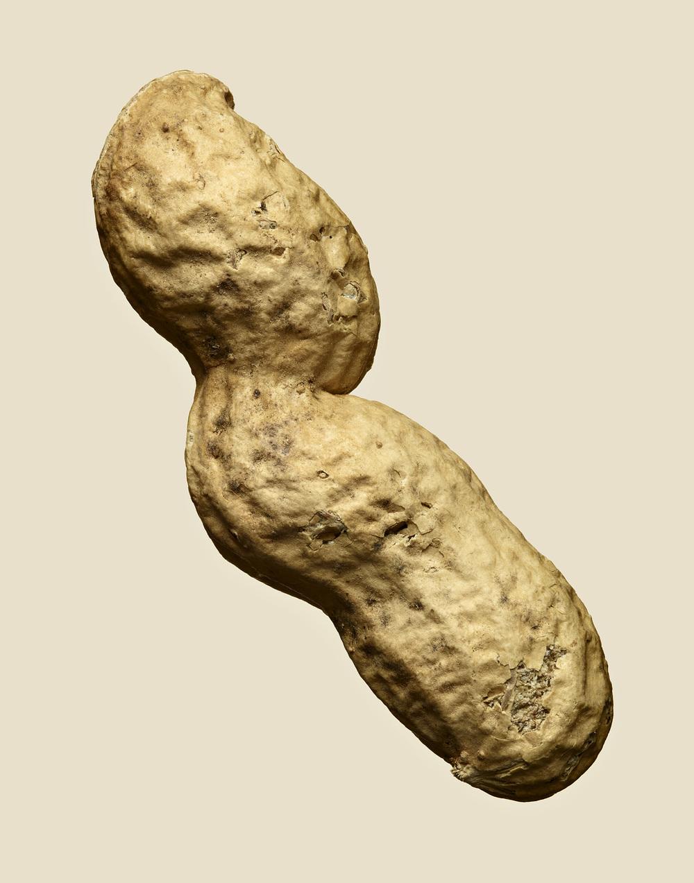 Triple Peanut