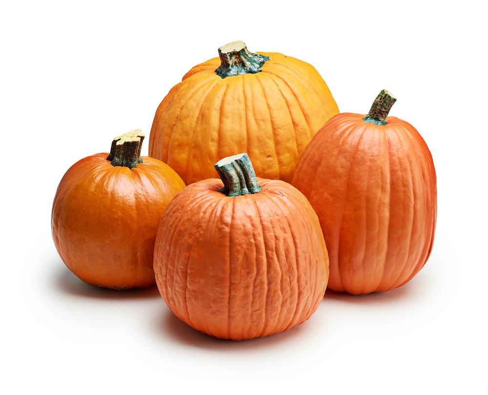 Real and Fake Pumpkins