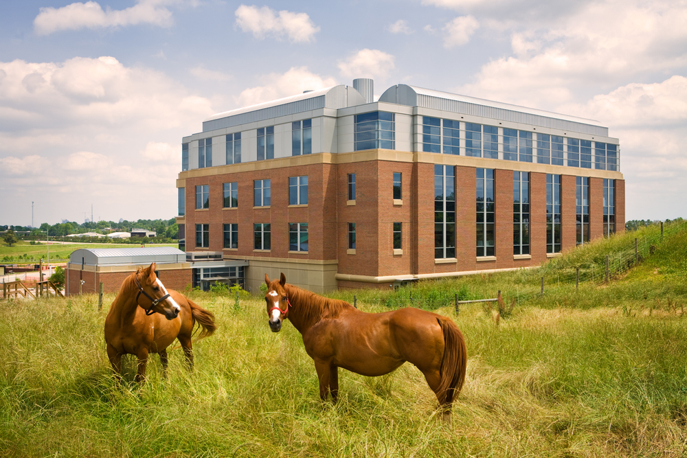 NC State Veterinary School