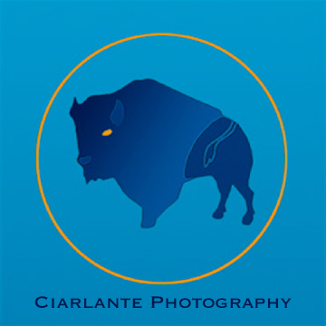 Ciarlante Photography