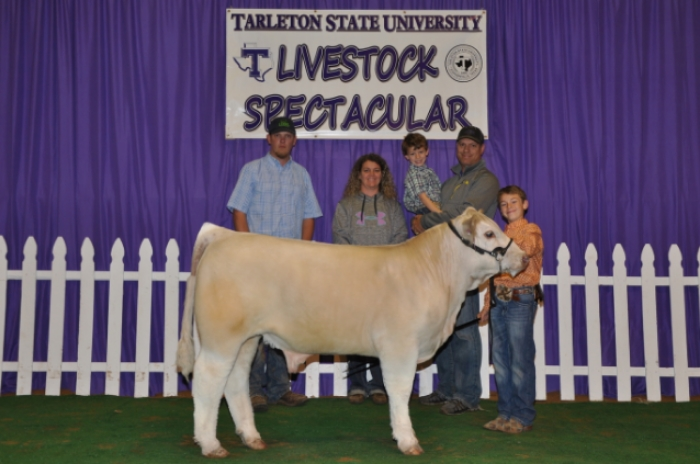 2015 TSC SPECTACULAR CHAMPION ABC RINGS A, B, C, & D  shown by  STRAN MOHR