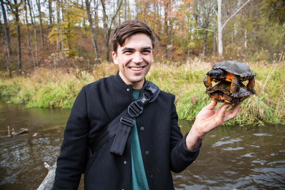 Christian Maurer with Wood Turtles attempting to mate in hand