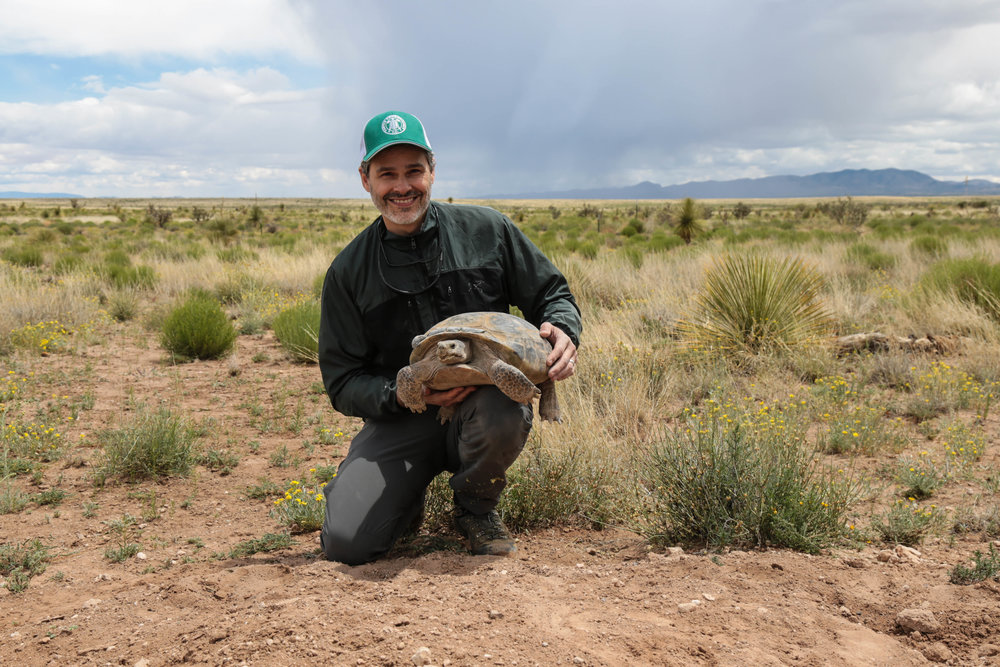 Paul Gibbons with a Bolson Tortoise on the Ladder Ranch in New Mexico