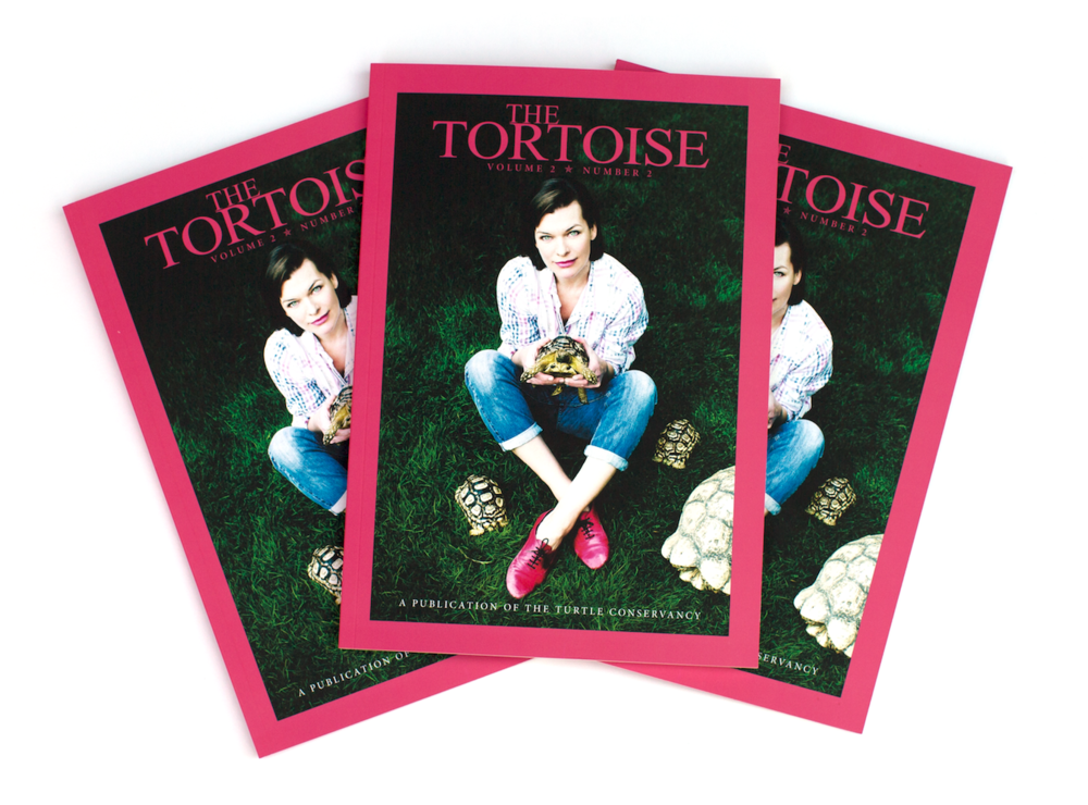 Check out this year's mag for our feature on Ted Turner's tortoises!