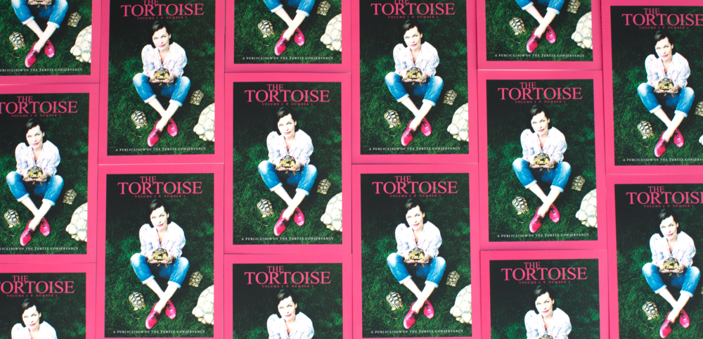 The Tortoise Magazine