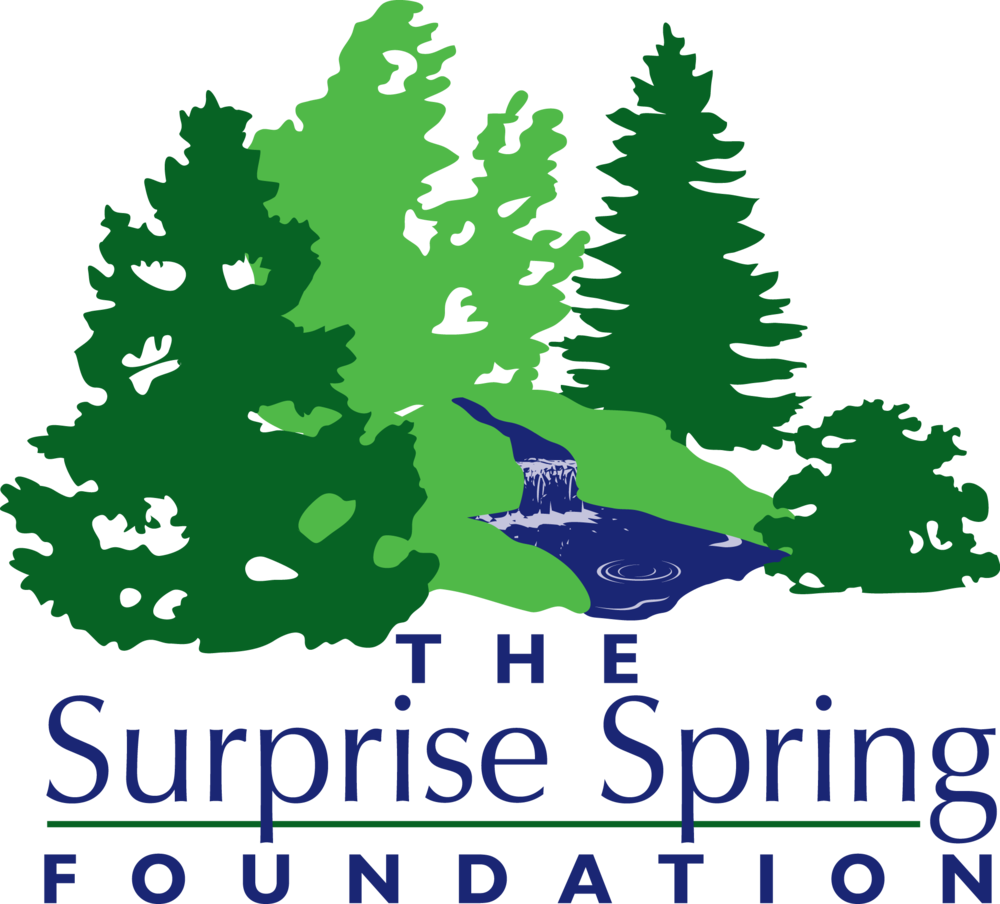 The Surprise Spring Foundation