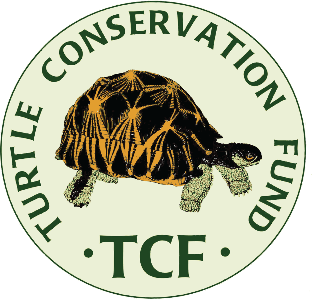 Turtle Conservation Fund