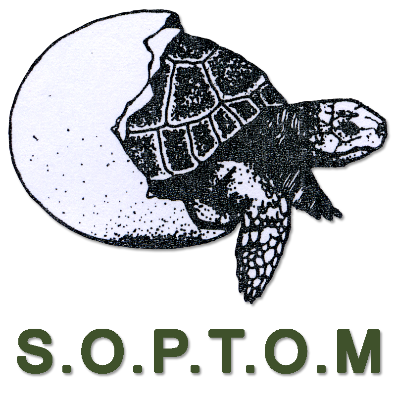 SOPTOM