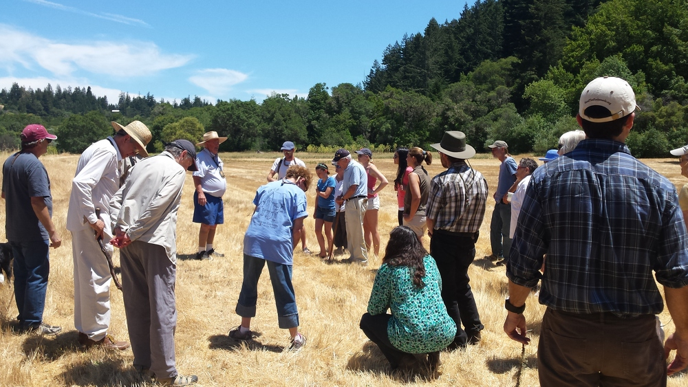 HWC Board Member Bill Stewart leads an interpretive walk.
