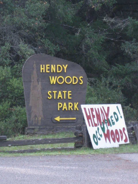 Taken in November 2011 during the Occupy Hendy Woods event over Veterans Day weekend.