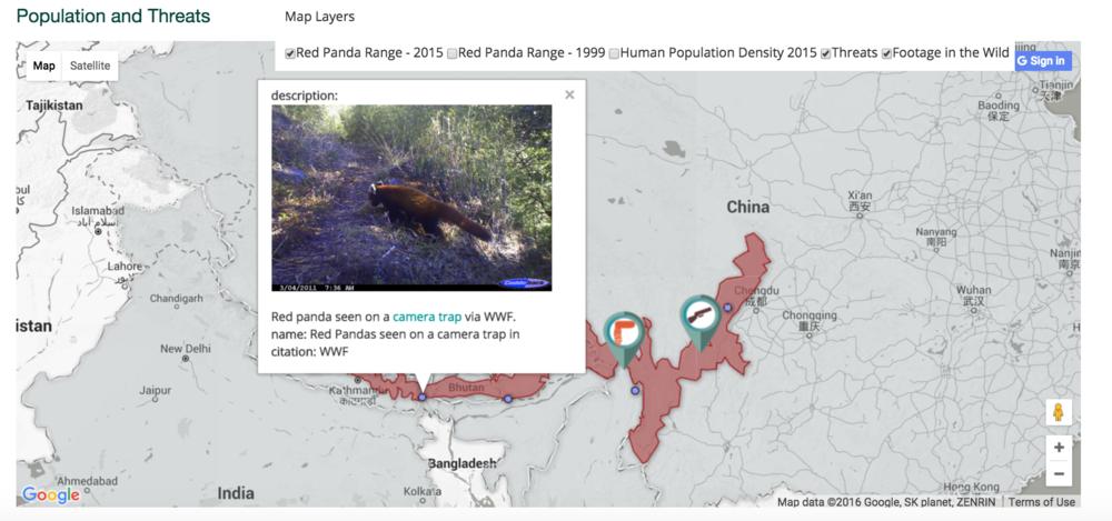 red panda data viz image
