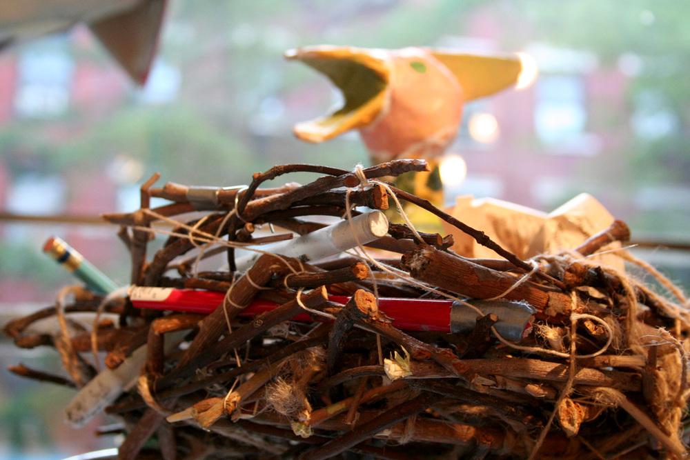 nest2_web.jpg