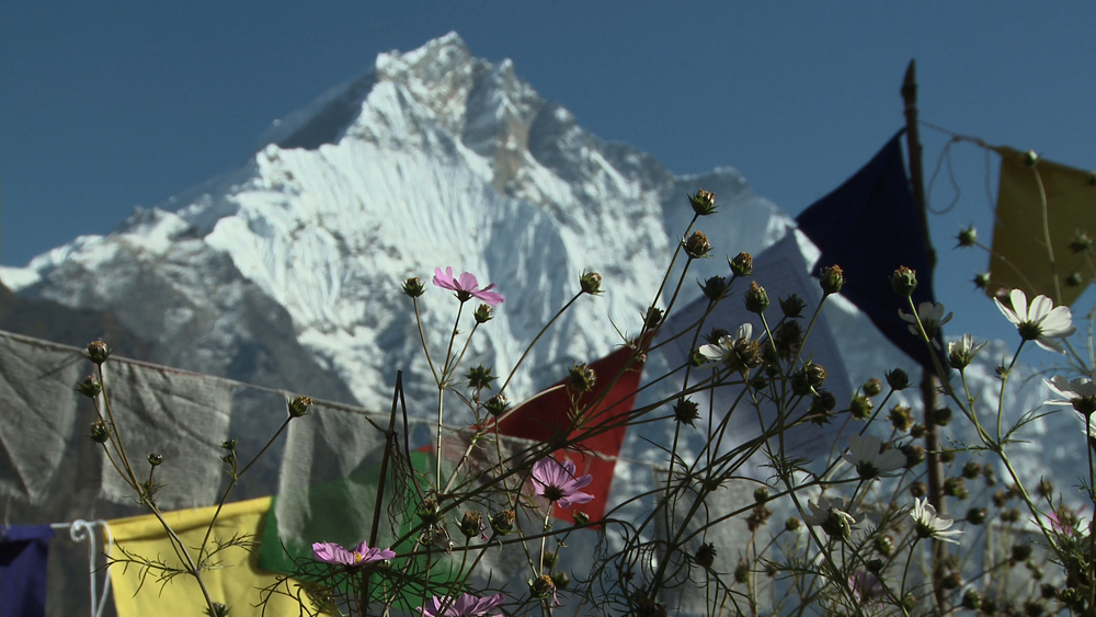 NEPL1343_BUD_prayer flags & himal.jpg