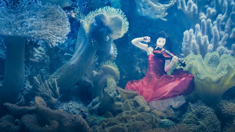 Composite - Underwater -_MGL7803-Edit.jpg