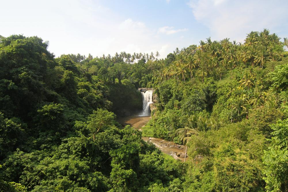 indo-waterfalls.jpg