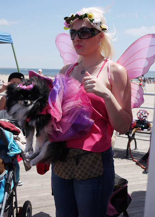20140620113910-pomeranian_black_fairy_costume.jpg
