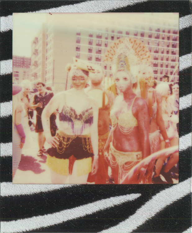 20140805152429-polaroids_-_marching_zebra.jpg