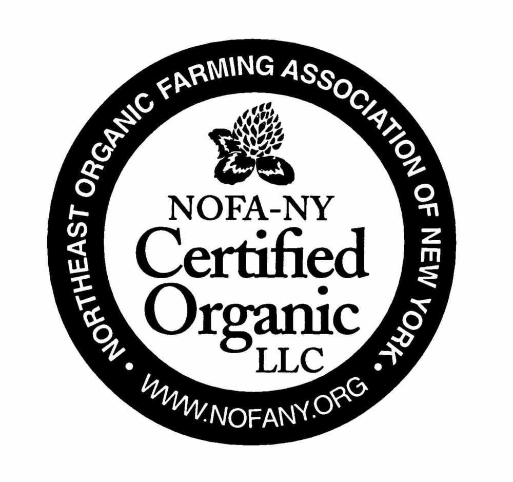 NOFACert Logo.jpg