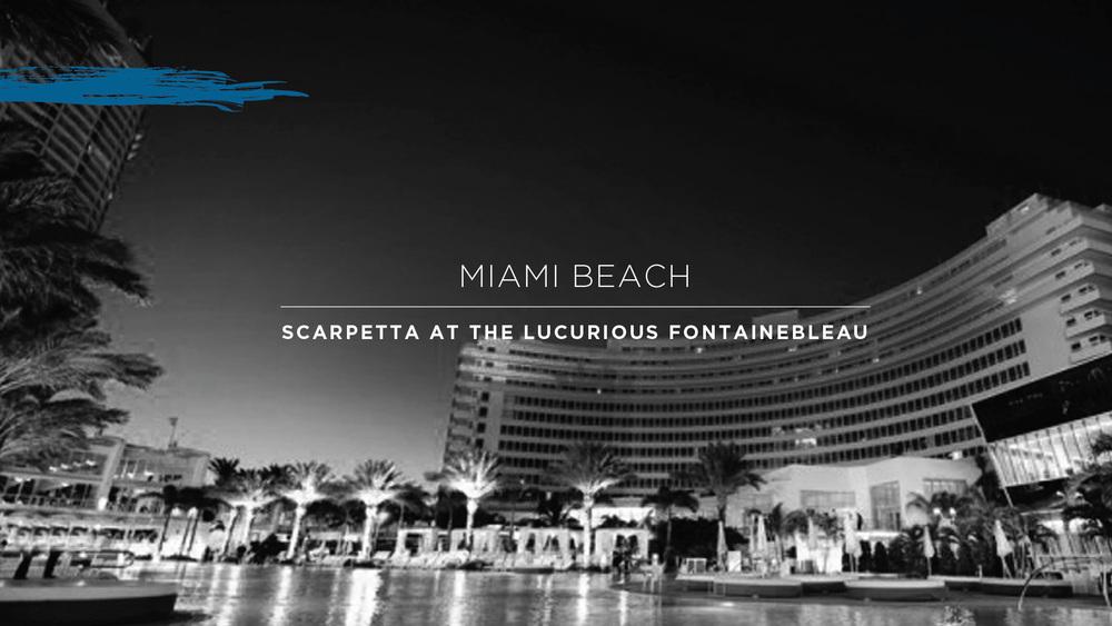ScottConant_Scarpetta-12.jpg