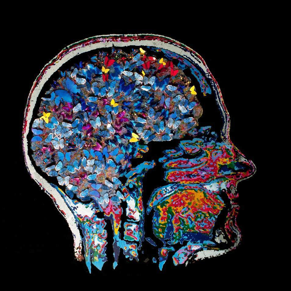 6: Neuroscience