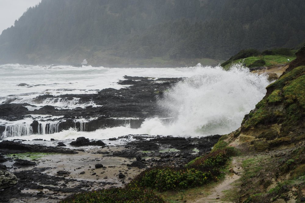 The Oregon Coast