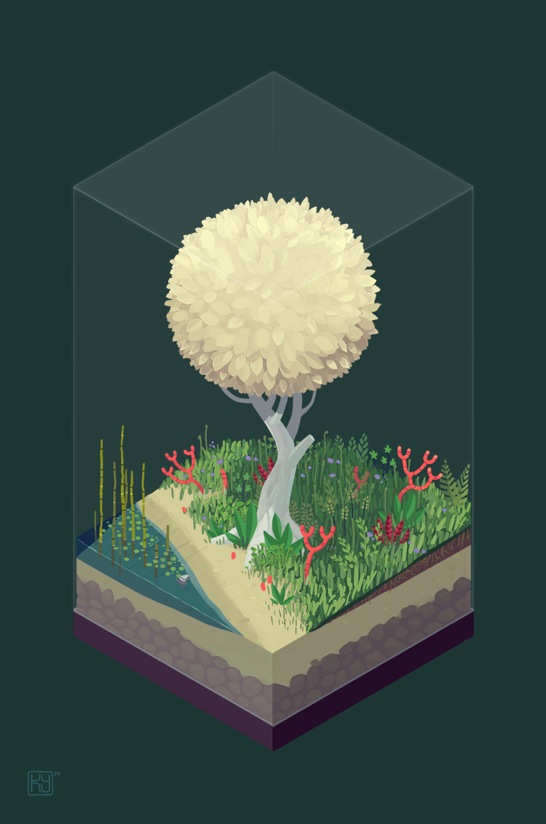 Things in boxes, isometric perspectives, geometry, foliage.