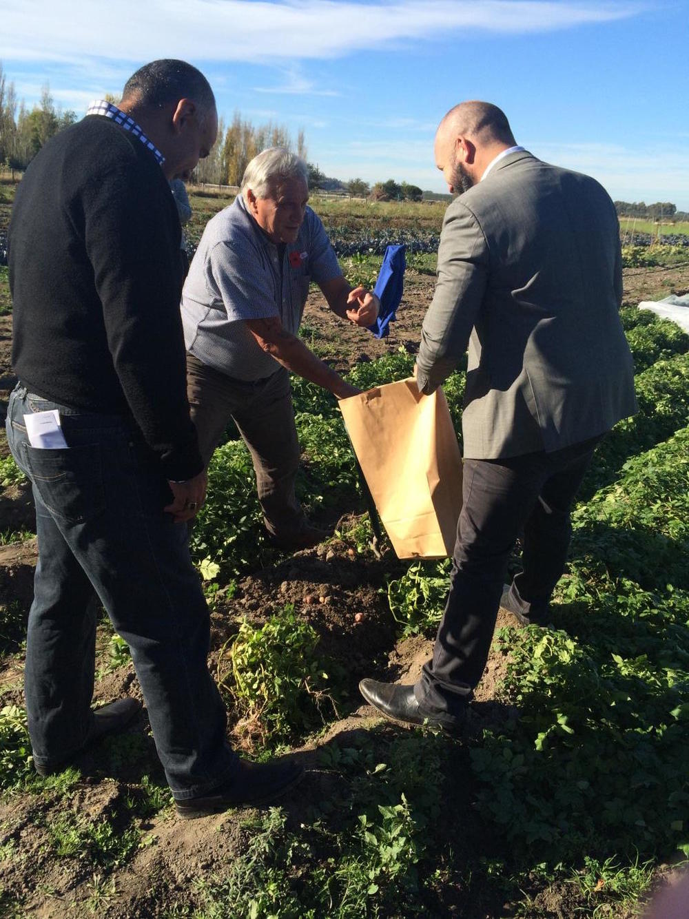 Minister Flavell, Peter Ramsden and Manaia Cunningham, showing that they know how to till the soil.