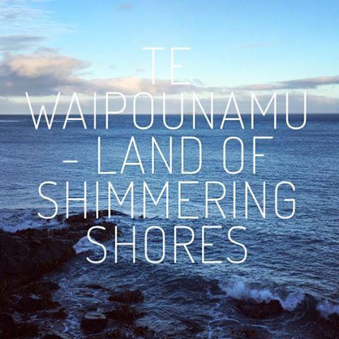Weekly blog is up! Read about what we got up to around the motu this week, link in bio. #whanauora #whanau #tepūtahitanga #tewaipounamu #weeklyblog