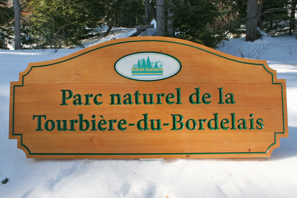 Hand-carved and CNC routed BC FIR Municipal Park Sign © JodieHebert 2017