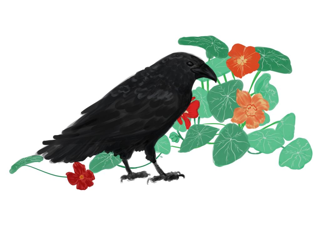 Garden of Raven.png