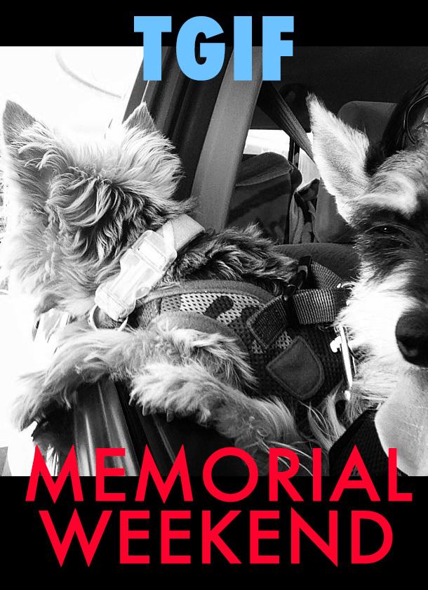 Memorial Weekend (Willie Nelson & Buju)