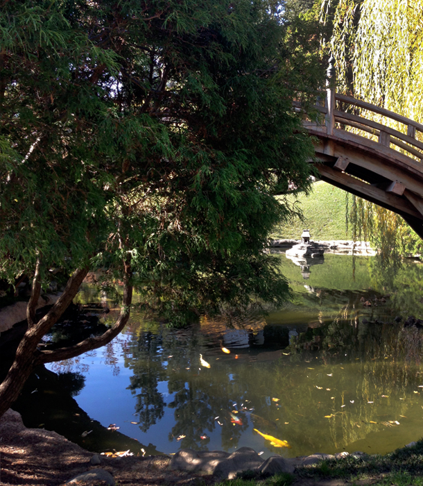 Chinese Garden | The Huntington Library / Brourbon and Goose Town Talk