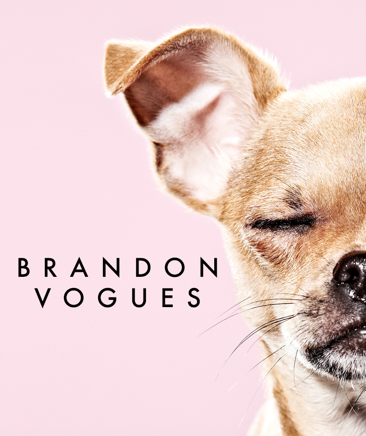 ArtSpeak: Brandon Vogues