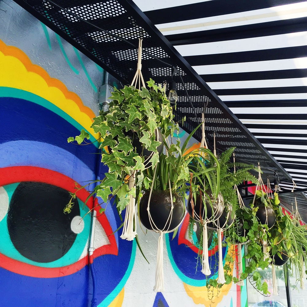 Plant goals found at Tacos Tu Madre