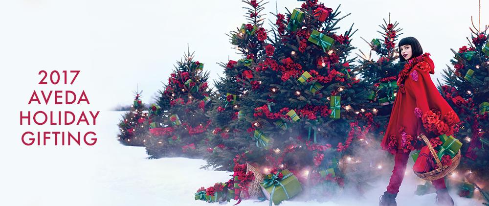 aveda-banner-holiday.png