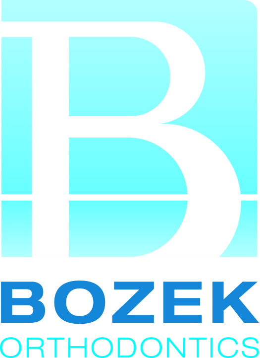 BOZEK_Logo_CMYK_FINAL_HR.jpg