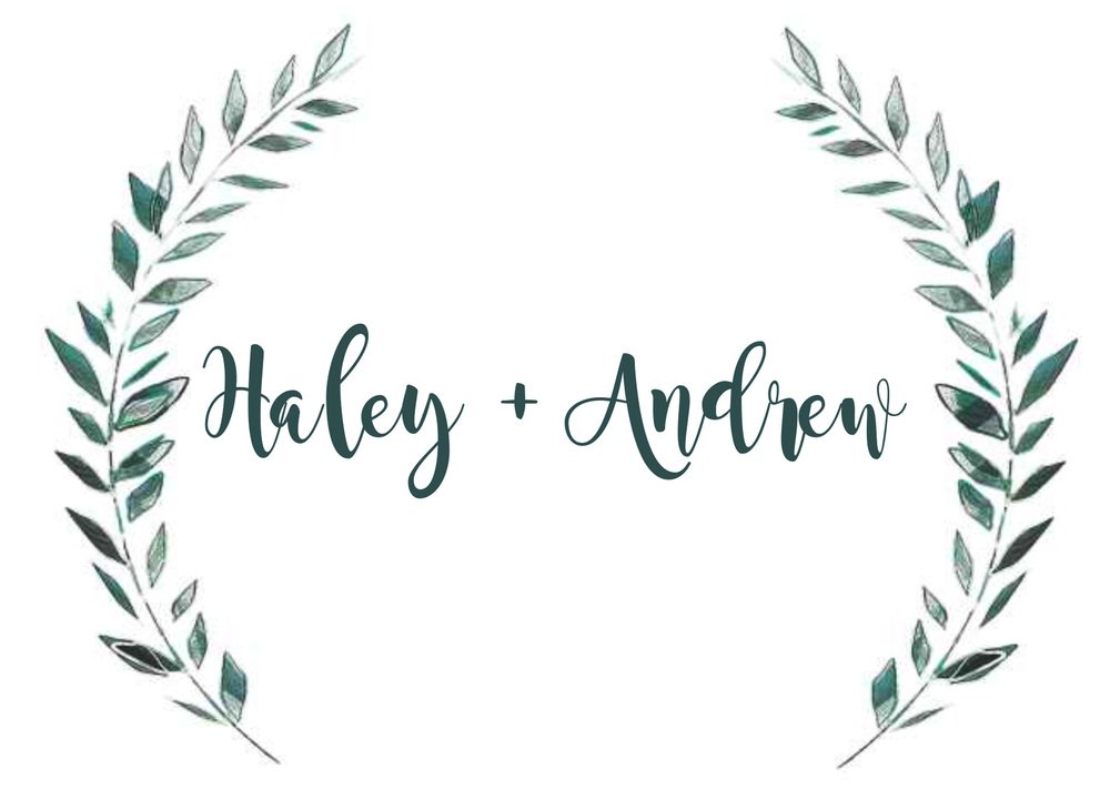 Haley + Andrew web logo.jpg