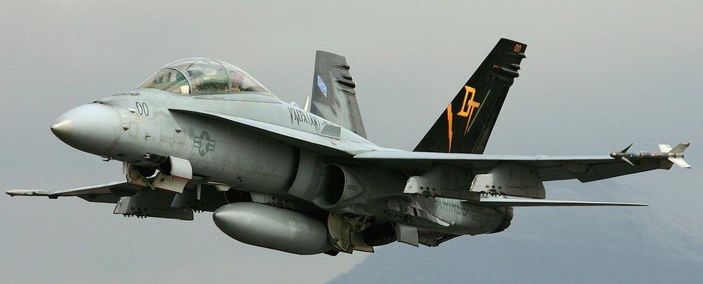 Hornet (1).jpg